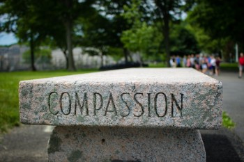 stone with the word compassion written on it